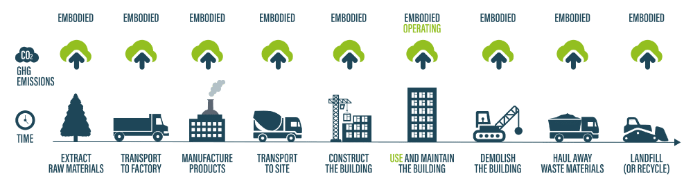 A graphic showing the different kinds of embodied carbon and operational carbon
